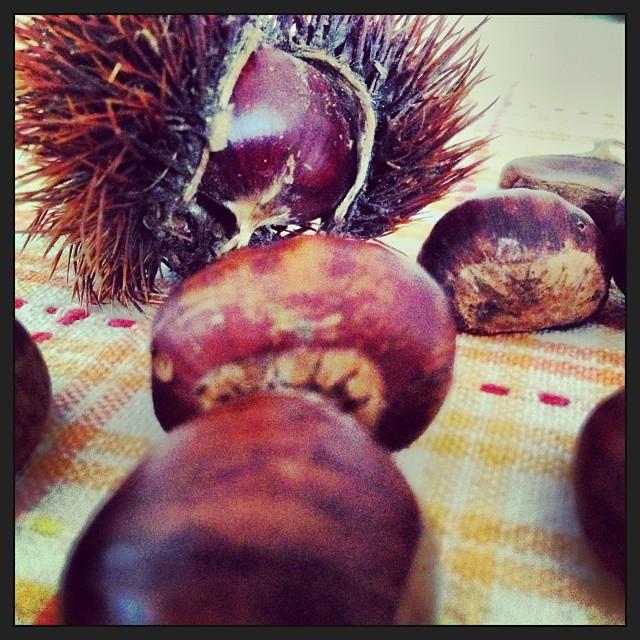 Autumn  #castagne #autunno #autumn #biella #andorno #casto italy #italia #hipstamatic #picoftheday #instagood #photooftheday #instamood #iphonesia #instaitalia  #igersitalia #poldo_
